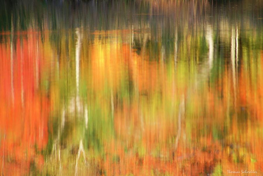 Autumns Brushstrokes by T-S Photo Art