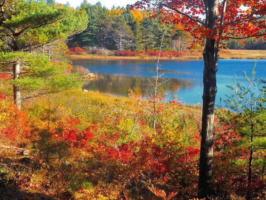 Autumns Colors by Paul Mangold