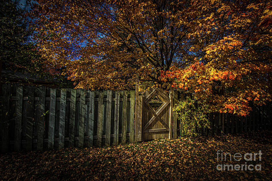 Autumn's Gate by Roger Monahan