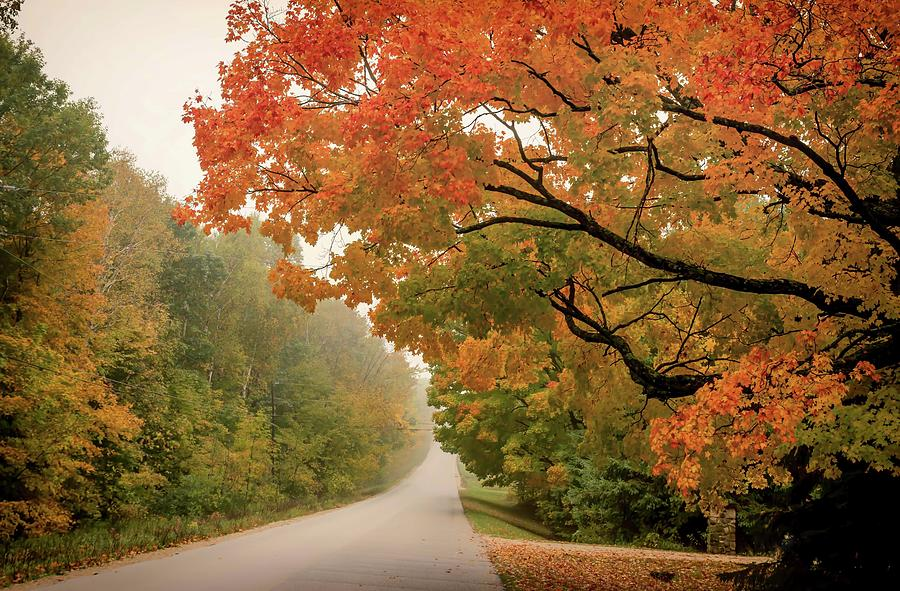 Autumn's Reach by Patti Raine