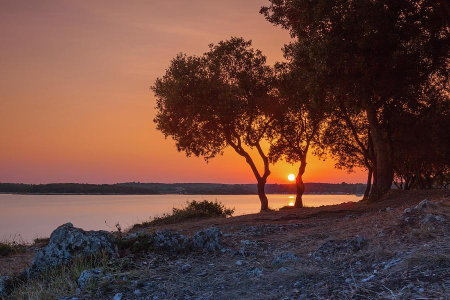 Awakening in orange by Davor Zerjav