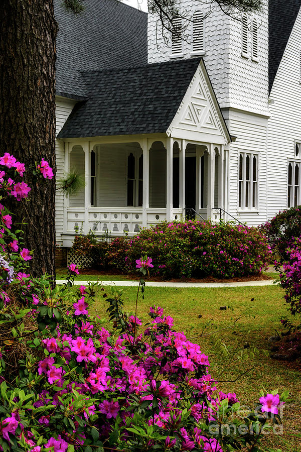 Azaleas and Summerville Presbyterian Church by Thomas R Fletcher