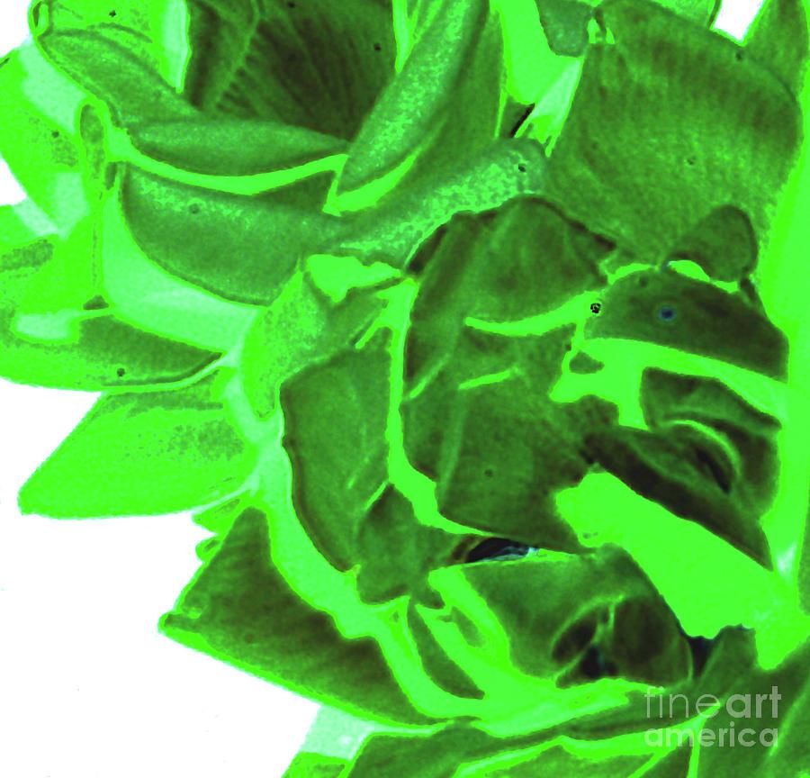Azure Green Digital Art