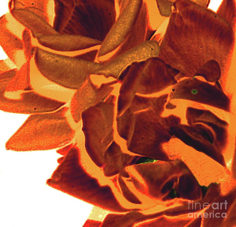 Azure Orange Digital Art