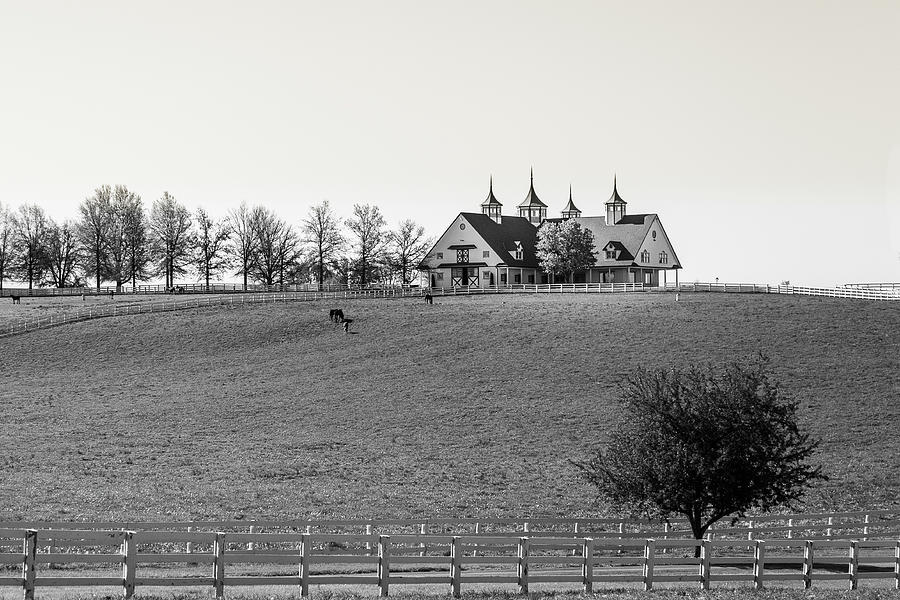 B and W 2 Horse Farm by Jack R Perry