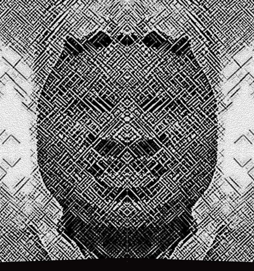 Portraits Digital Art - B In W by Bruce IORIO