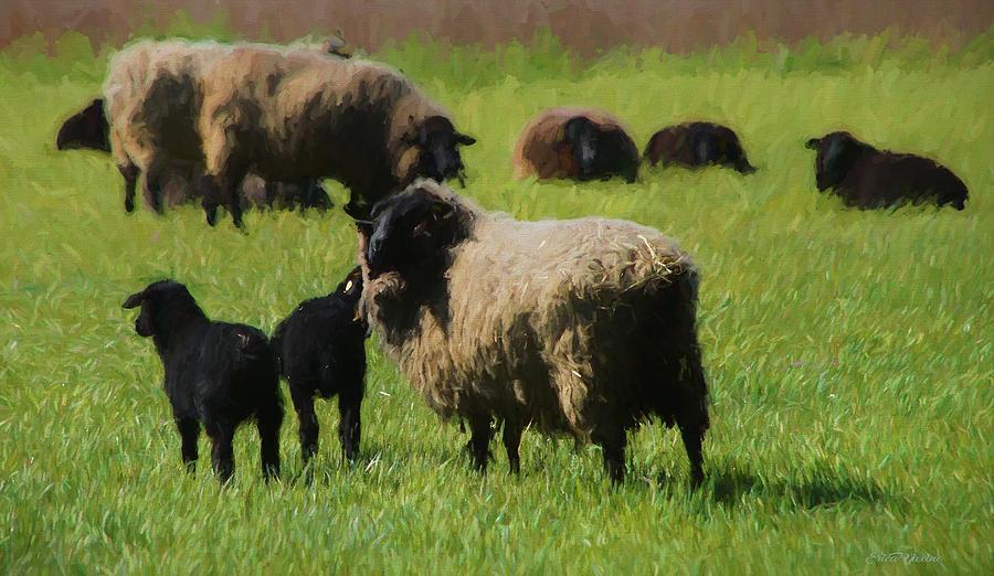 Baa Baa Black Sheep - Painting by Ericamaxine Price