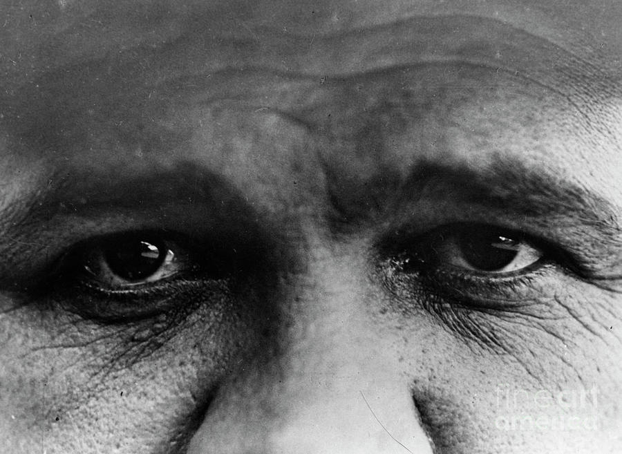 Babe Ruth Eyes Photograph by Transcendental Graphics