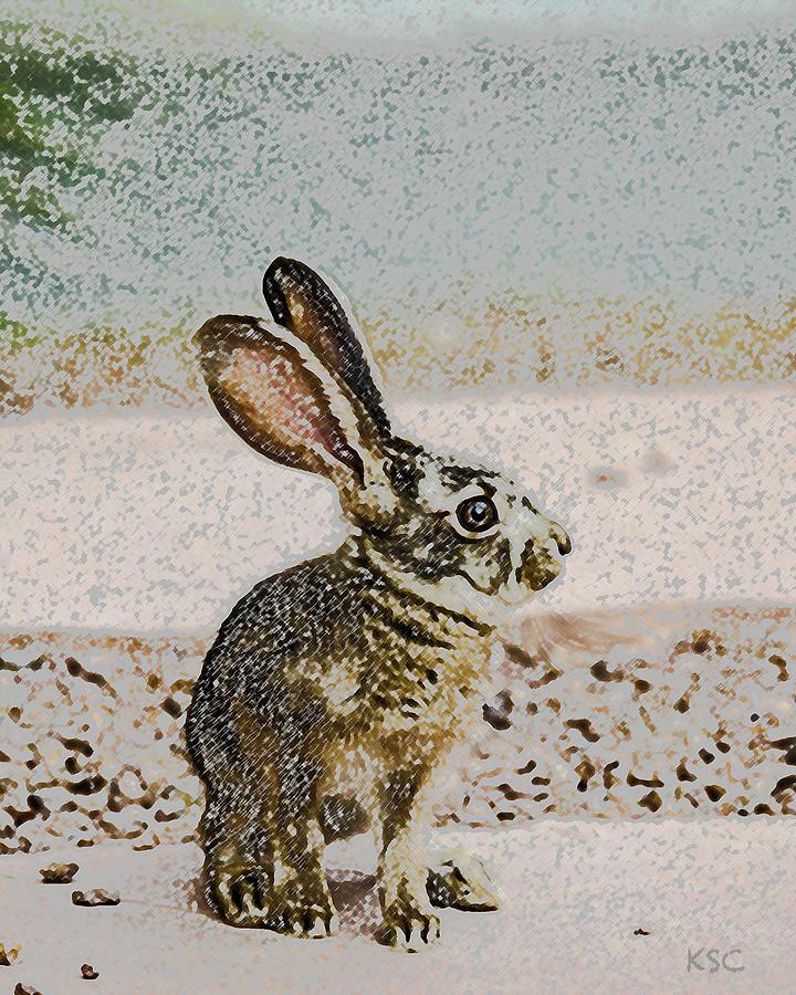 Baby Bunny by Karen Conley
