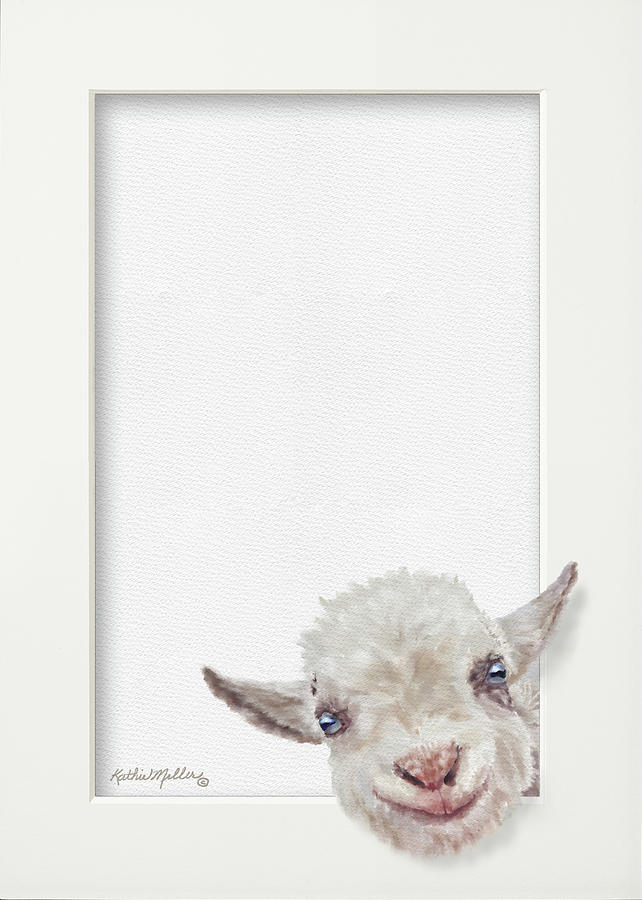 Baby Goat by Kathie Miller