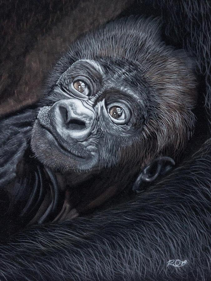 Baby Pastel - Baby Gorilla by Raymond Ore
