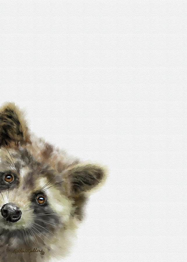 Baby Racoon by Kathie Miller