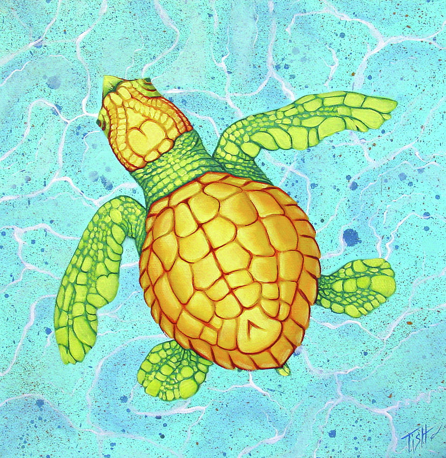 Baby Sea Turtle by Tish Wynne