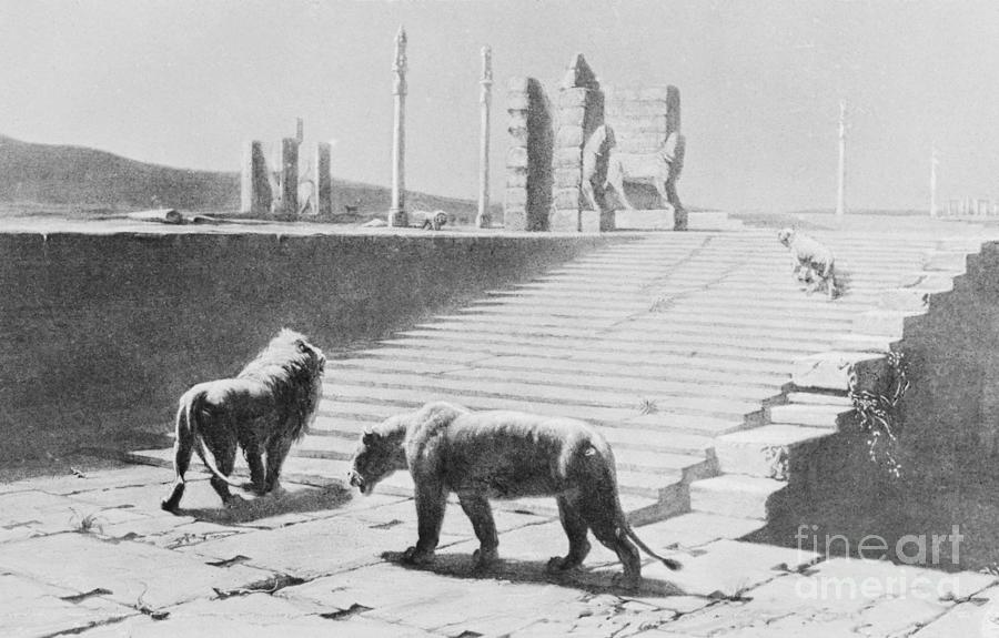 Babylon After Being Destroyed Photograph by Bettmann