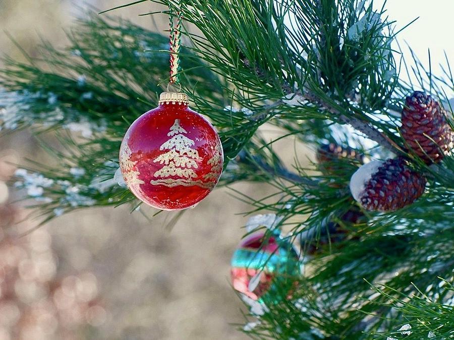 Mcdonalds Christmas Ornament.Backlit Christmas Ornament By Marsha Mcdonald
