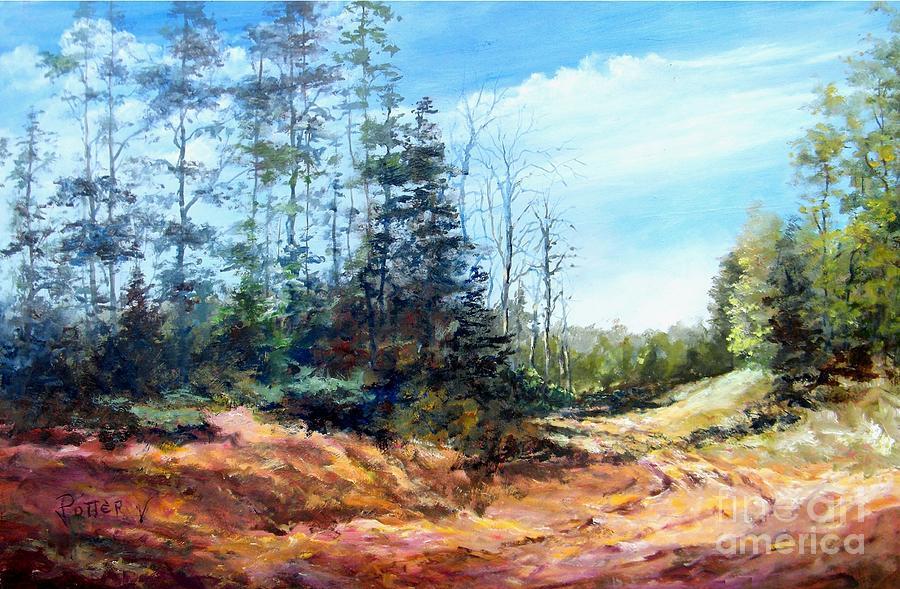 Backroads by Virginia Potter
