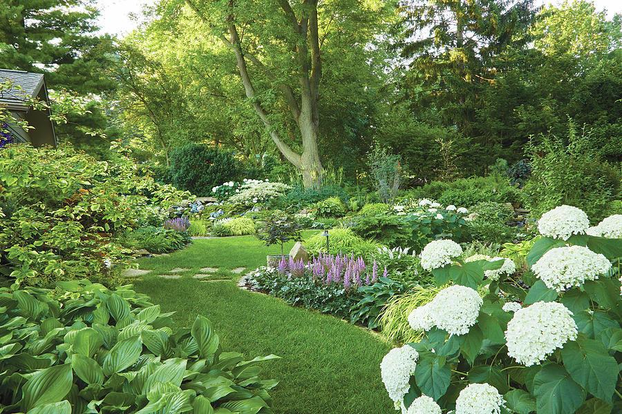 Backyard perfection by Garden Gate magazine