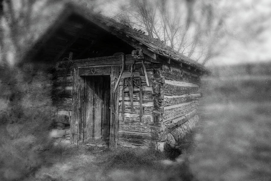 Backyard Shed Black and White by Sharon Popek
