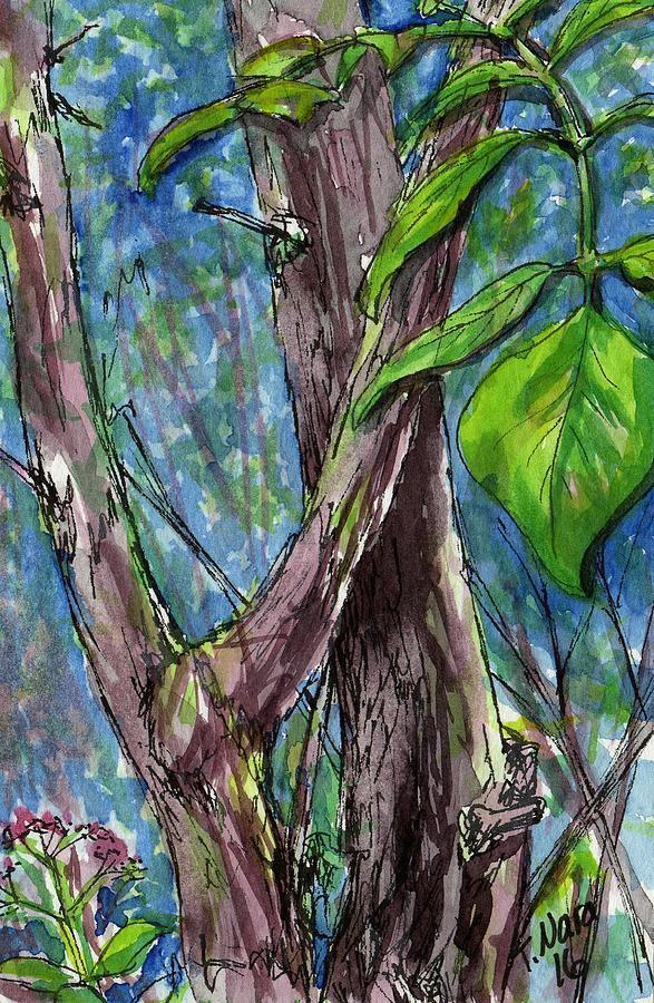 Backyard Woods by Tammy Nara