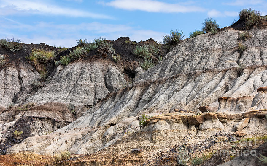 Badlands Formations by Alma Danison