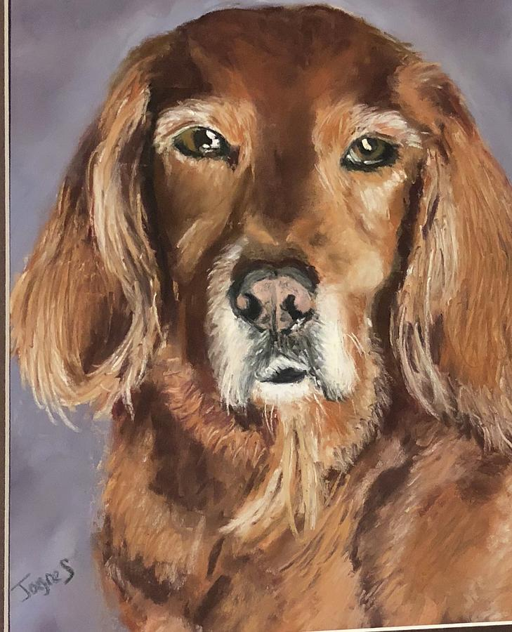 Bailey by Joyce Spencer