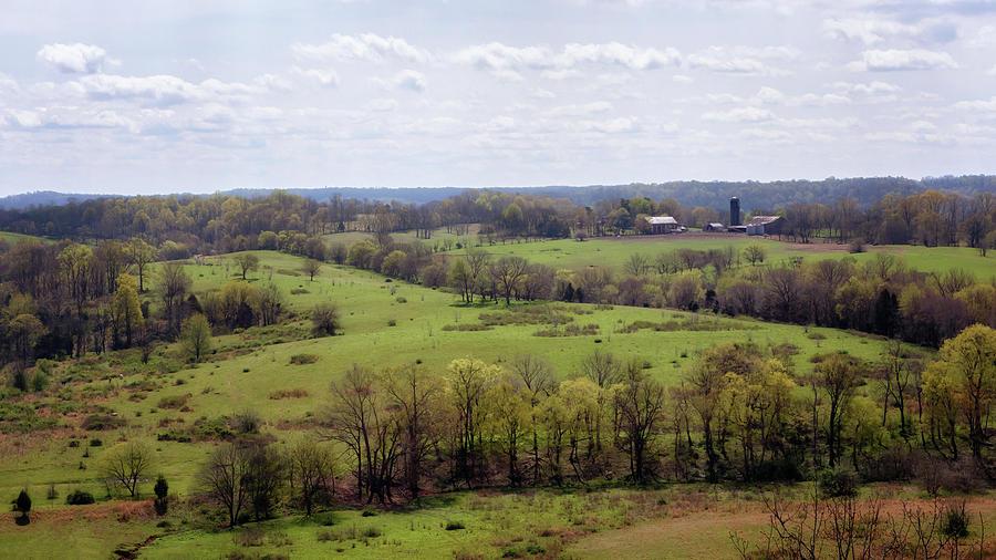 Baker Bluff Overlook by Susan Rissi Tregoning
