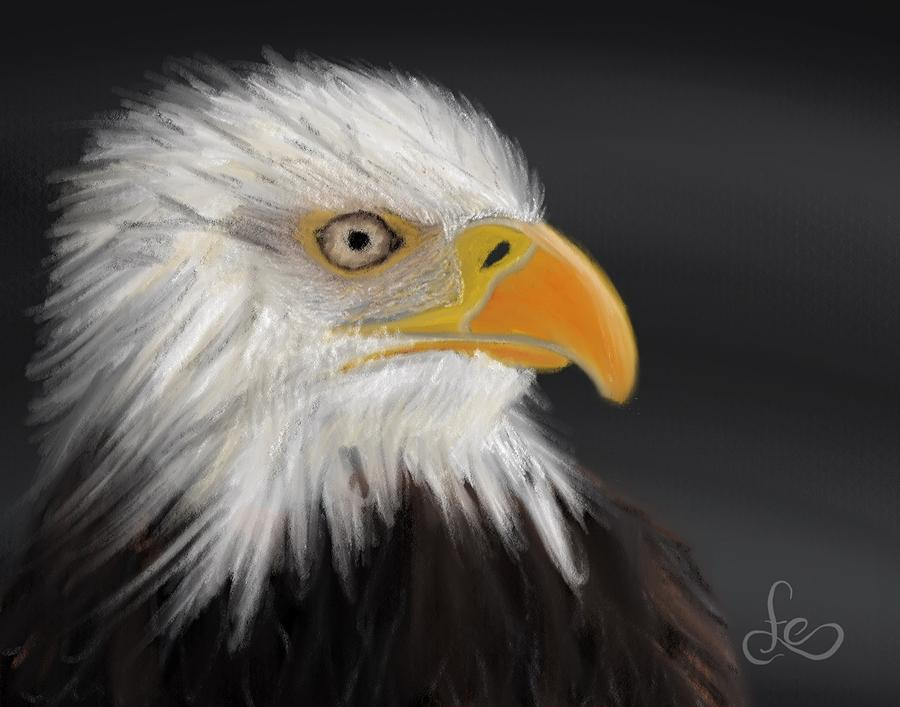 Bald Eagle Pastel - Bald Eagle by Fe Jones