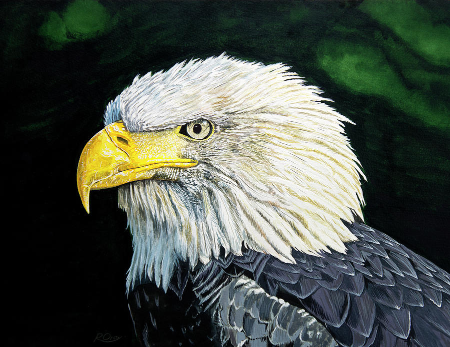 Bald Eagle Painting - Bald Eagle by Raymond Ore
