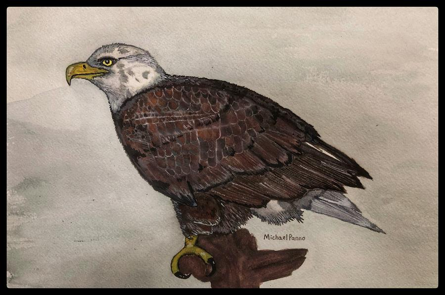 Bald Eagle W/ Boarder Painting