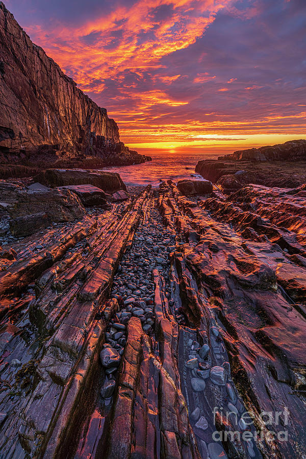 Bald Head Cliffs - Cape Neddick Maine by Craig Shaknis