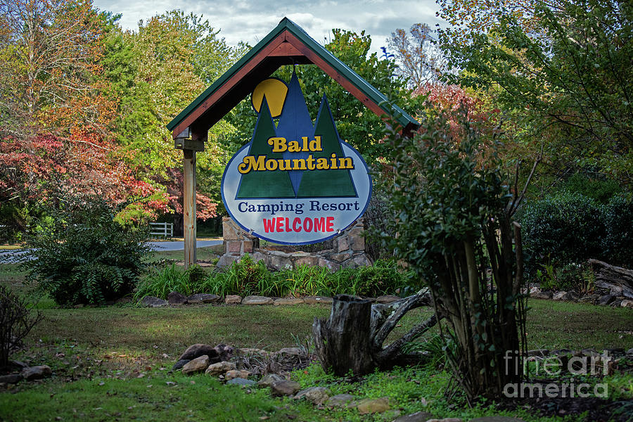 Bald Mountain Camping Resort by Julie Blackburn