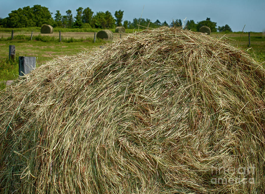 Copy Space Photograph - Bales Of Hay by Ruth H Curtis