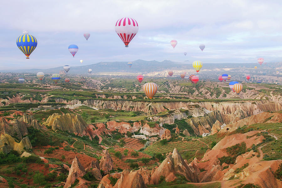 Balloons In The Sky Photograph by Lilia Petkova