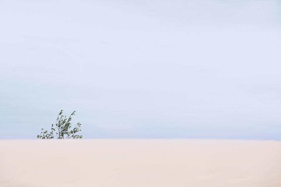 Baltic sea #4395 by Andrey Godyaykin
