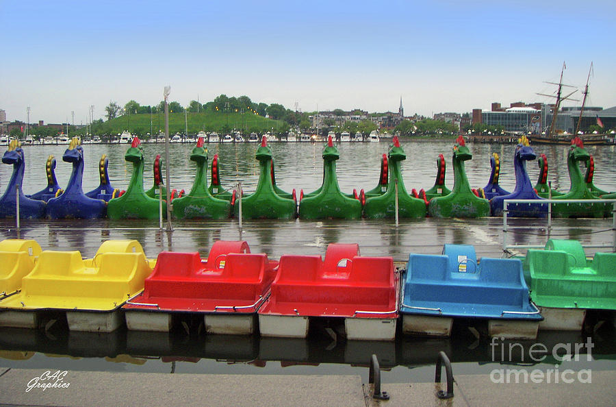 Baltimore Paddle Boats by CAC Graphics
