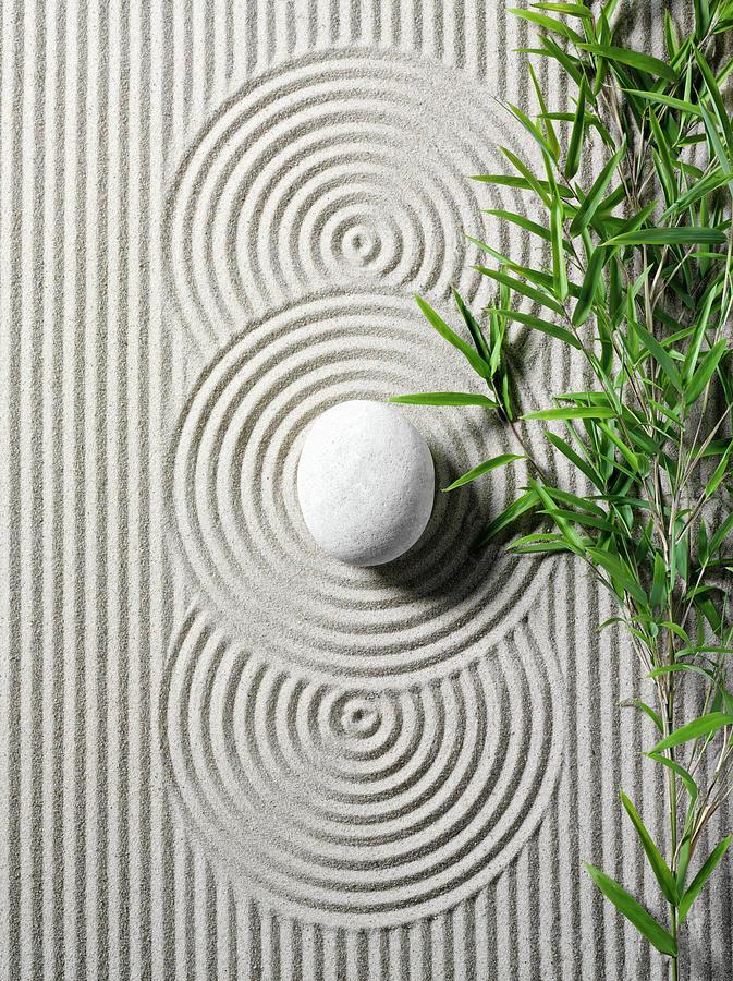 Bamboo In A Zen Garden Photograph by Wragg