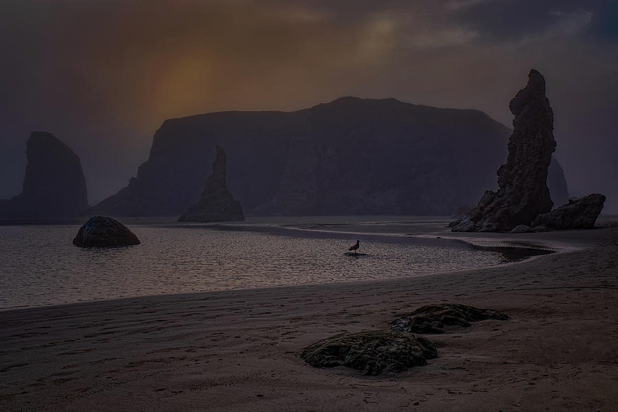 Bandon Beach 3 by Thomas Hall
