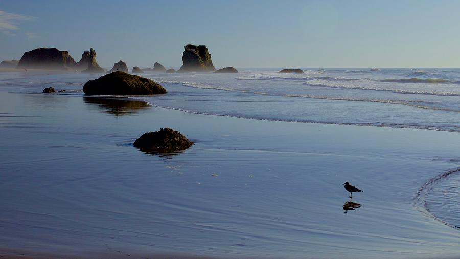 Bandon Beach by Todd Kreuter
