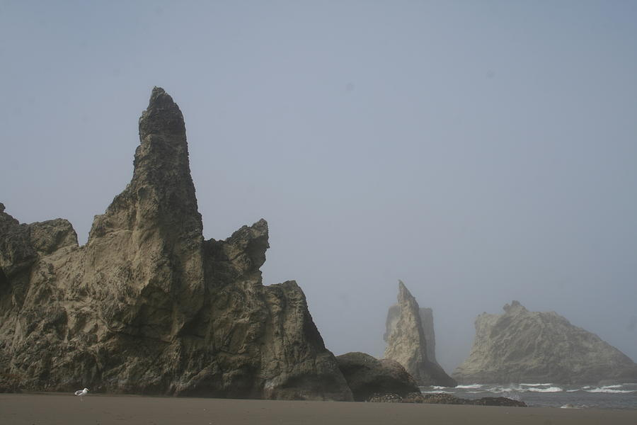 Bandon Rocks Faint by Dylan Punke