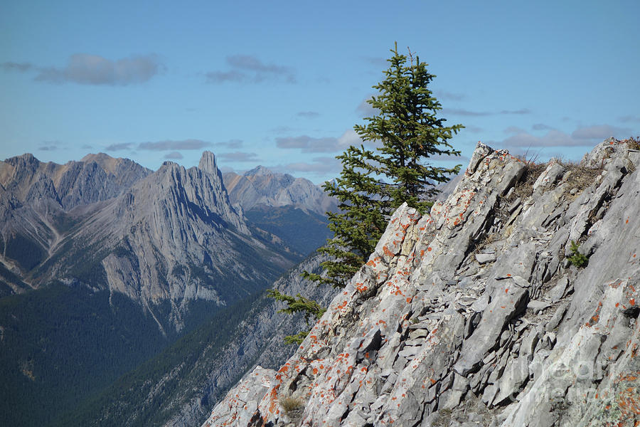 Banff, Canada Mountain Scene by Wilko Van de Kamp