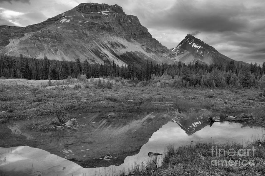 Banff Pond Sunset Reflections Black And White by Adam Jewell
