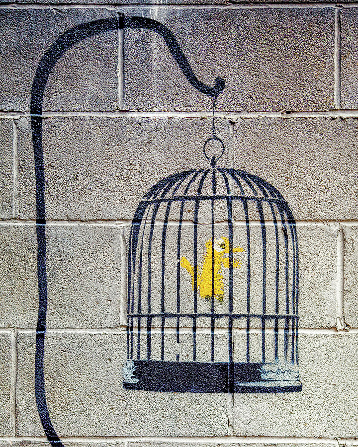 Banksy Bird Cage Detroit by Gigi Ebert