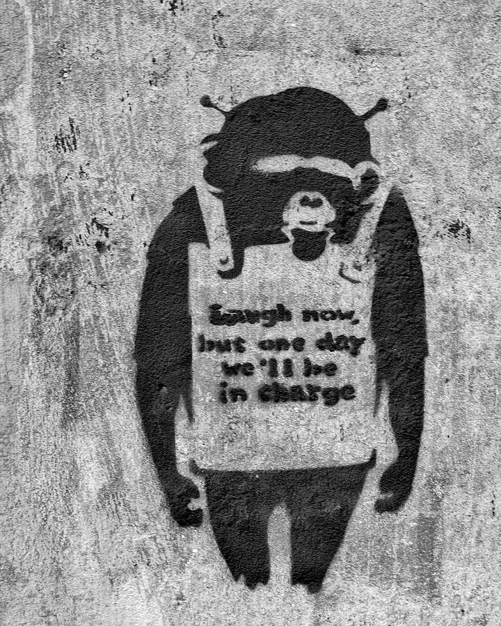 Banksy Chimp Laugh Now Graffiti by Gigi Ebert
