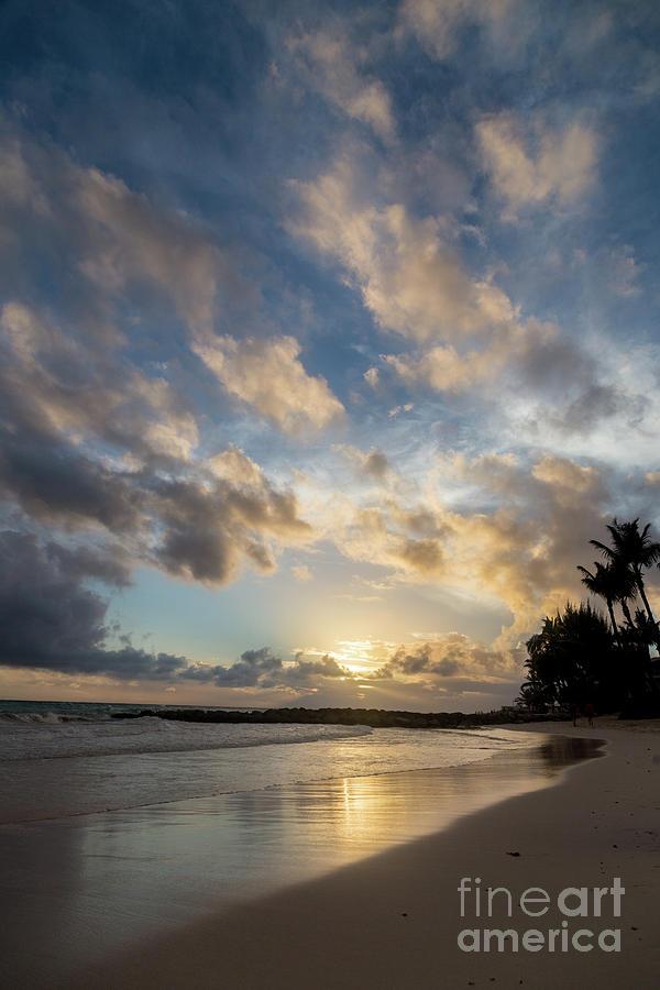 Barbados Beach Light by Alanna DPhoto