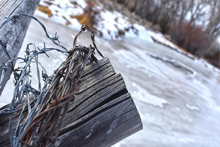 Barbwire Cold by Jason Bohannon