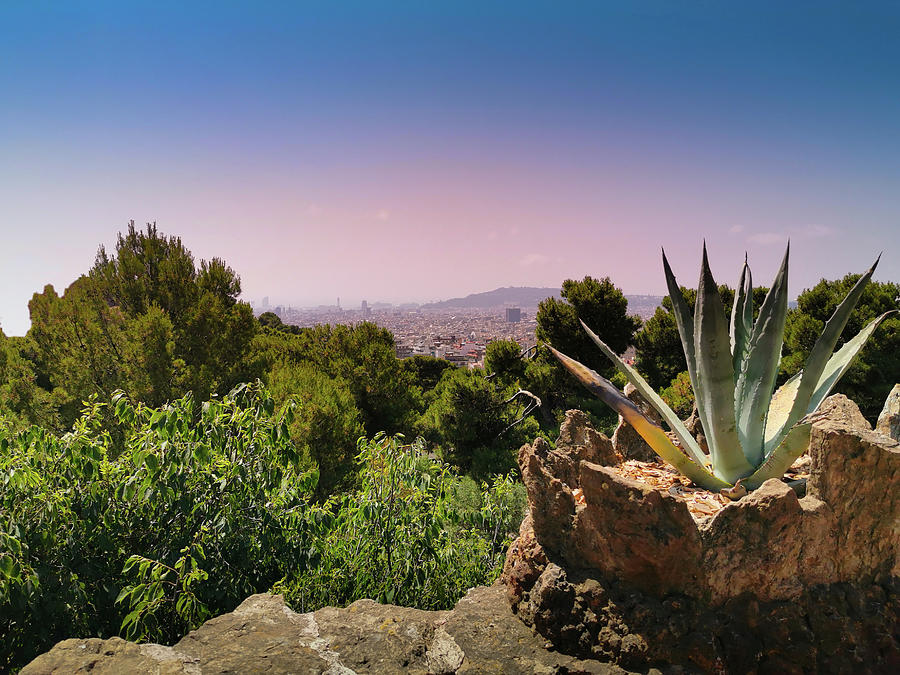 Barcelona View From Park Guell  by Art Spectrum