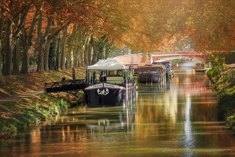 Barges on Canal de Brienne Toulouse France  by Carol Japp