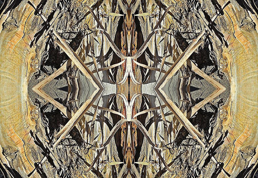 Photograph Digital Art - Bark Laces by Sherrie Hall