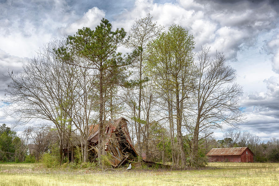 Barn #2131 by Susan Yerry