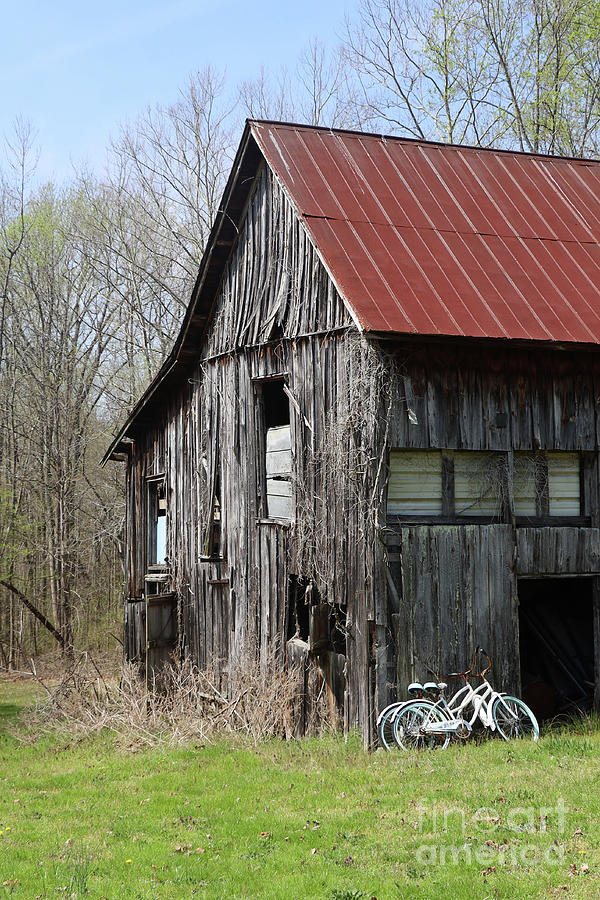 Barn in KY no 111 by Dwight Cook